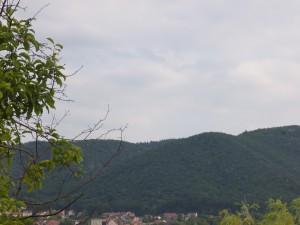 Blick auf den Hexentanzplatz in Thale